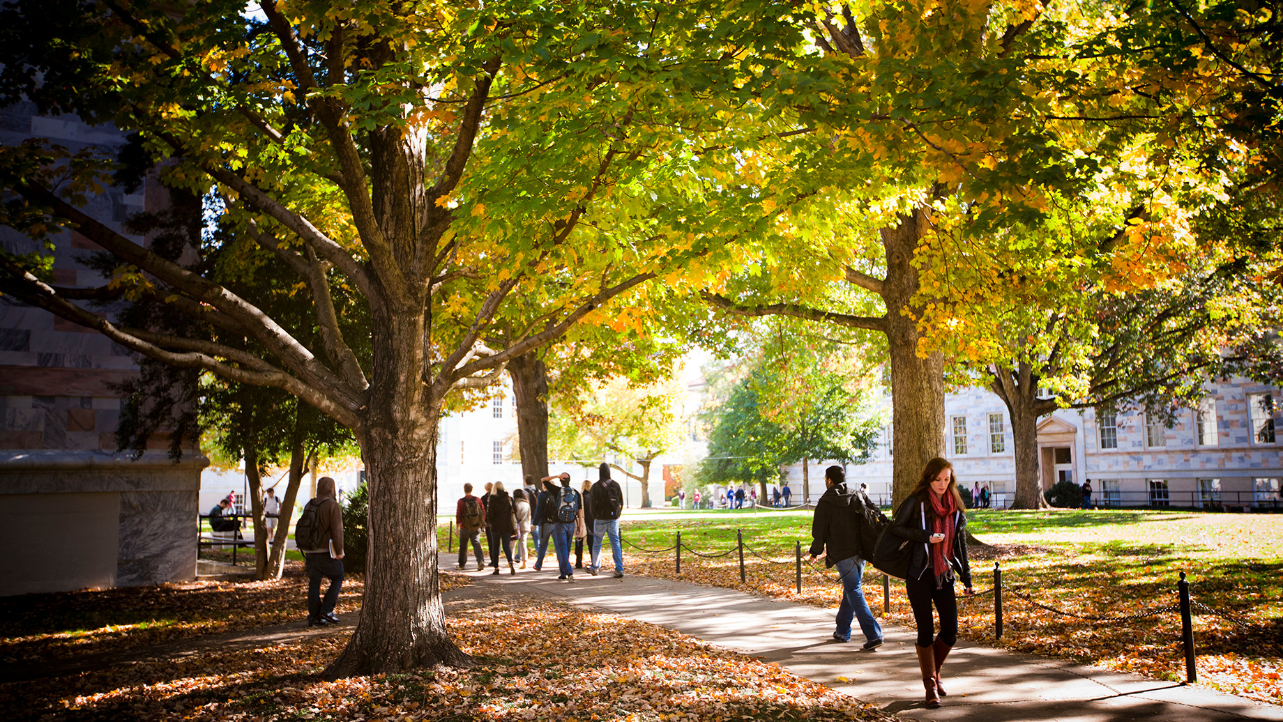 students walking on Emory's Atlanta campus in the fall